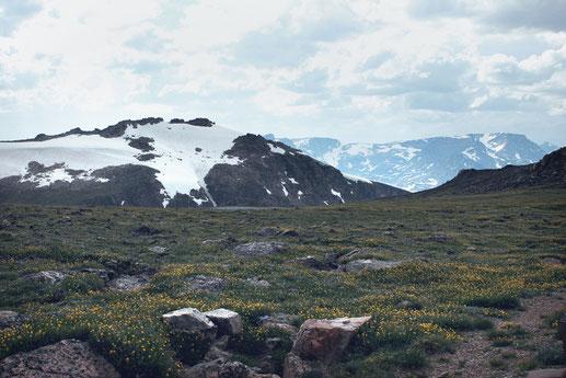 Die schönsten Roadtrips in den USA, Beartooth Pass, Wyoming, Motorradstrecke