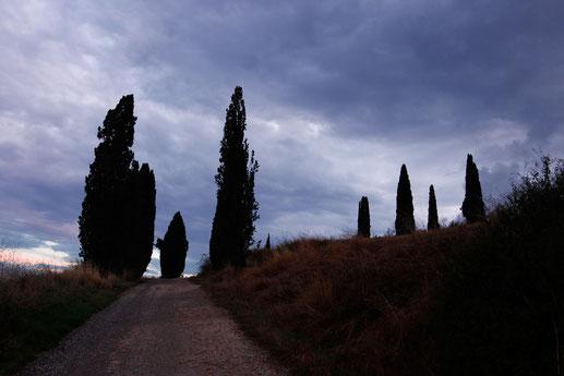 Road trip Tuscany, Italy, lonelyroadlover