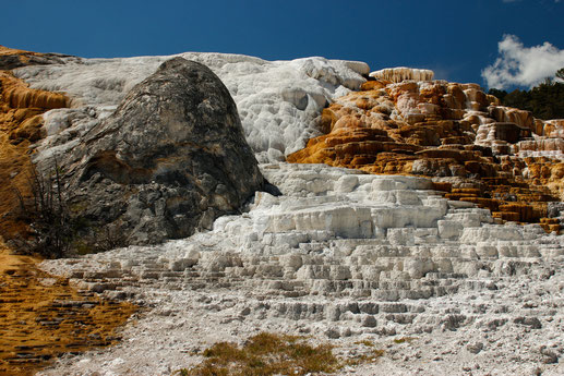 Die Mammoth Hot Springs in Yellowstone