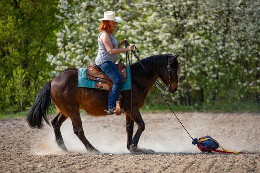 Flatterball, Horsemanship, Gelassenheitstraining Hindernis, Westernreiterin