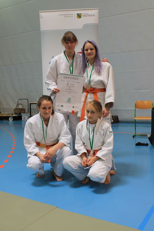 Teilnehmer am Landesfinale Judo WK II Mädchen - HGG Thum   2. Platz
