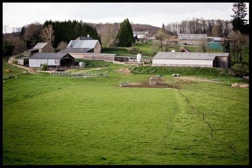 L'exploitation agricole de François Tavé