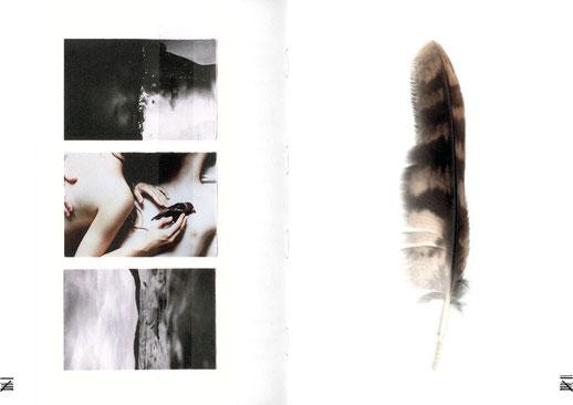 apollo-artemis, mode, design, nachhaltig, handgemacht, kollektion, tinnitus, stimmung_album_feder