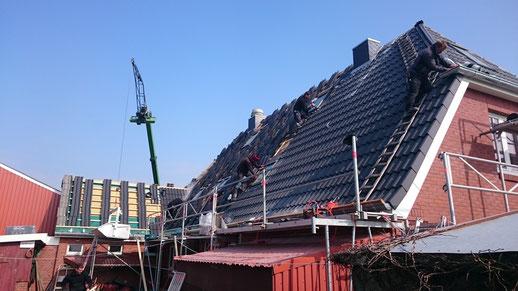 Die Zimmermannsleute beim Eindecken von haus Norderoog