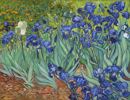 Ирисы самые дорогие картины Ван Гога