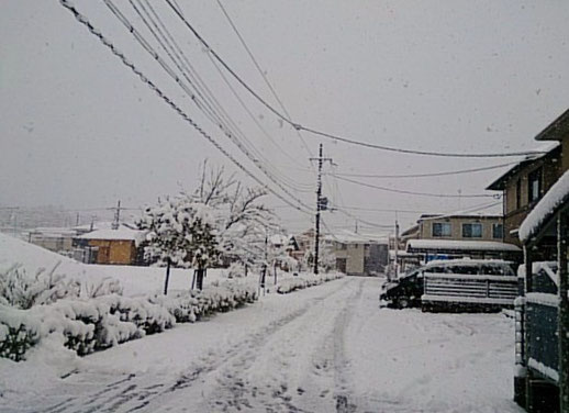 桜ヶ丘団地