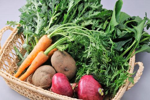 自然栽培野菜(季節の野菜セット全国発送します)
