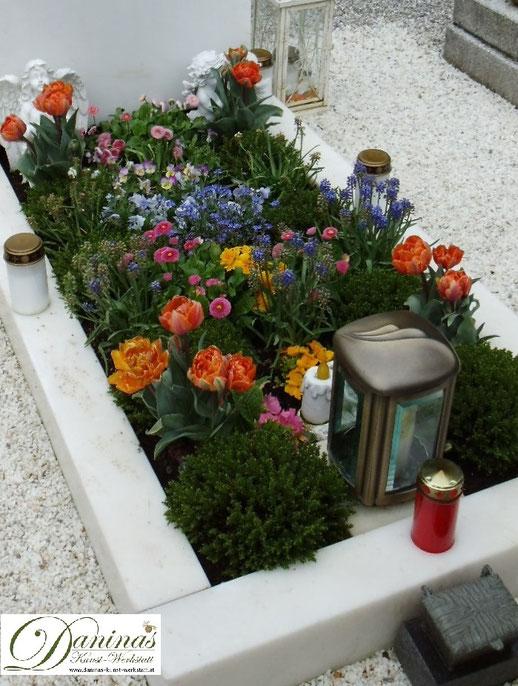 Grabgestaltung Frühjahr - Erste Frühlingsblumen fürs Grab: Tulpen, Bellis, Traubenhyazinthen, Vergissmeinnicht, Stiefmütterchen und Primeln