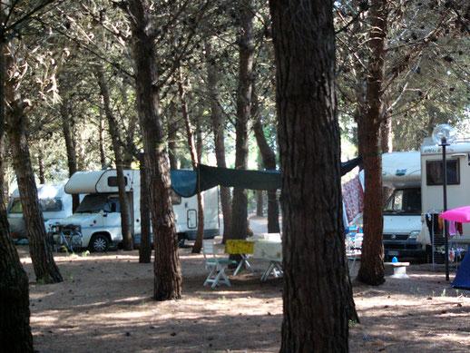 area camper nel salento agricampeggio campeggio lama