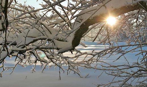 冬はドレッドヘアに最適な季節!?