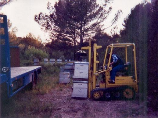 transhumance lavande Provence
