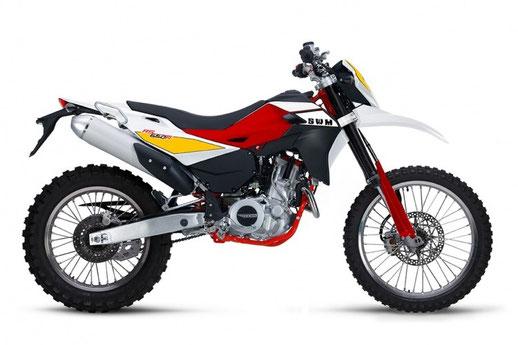 2016 SWM RS650R