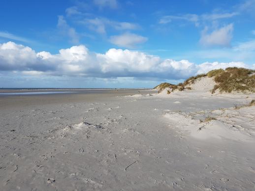 Amrum Strand und Dünen