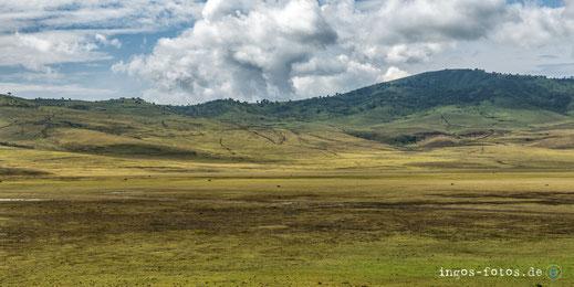 ingos fotos, Ngorongoro Hochland, Tansania