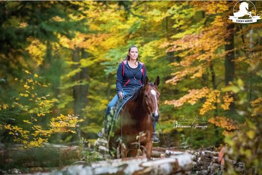 freies Reiten, Horsemanship, Freiarbeit Pferd, Wald, Ausreiten, Bodenarbeit
