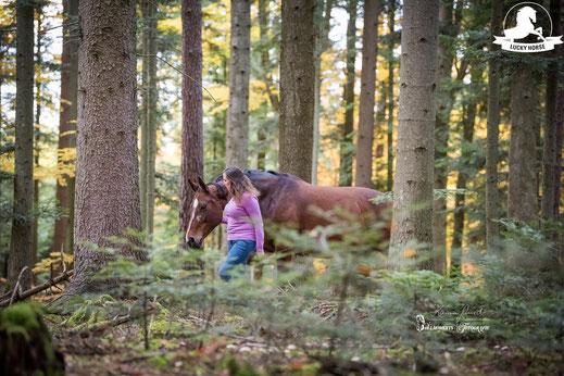 freies Reiten, Horsemanship, Freiarbeit Pferd, Wald, Ausreiten, Bodenarbeit, Gelassenheitstraining