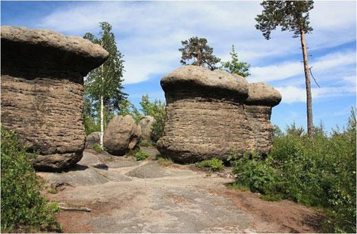 Slavěnské houby bei Dorf Slavný