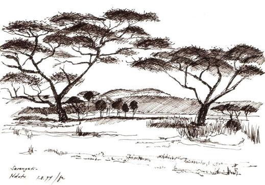 Ndutu, Serengeti, 1994 (Filzstift)