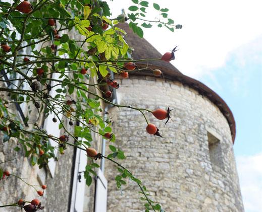 Les deux tours abritent des chambres.