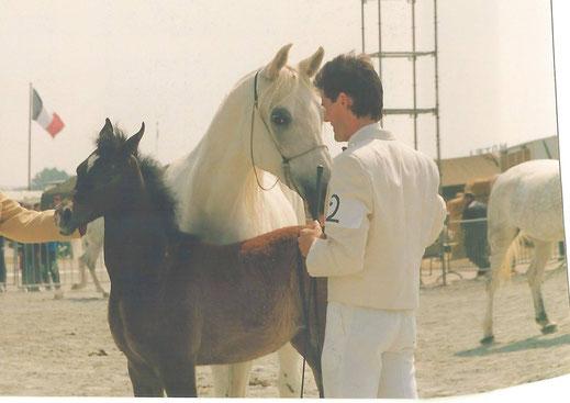 Ghazala with Defi