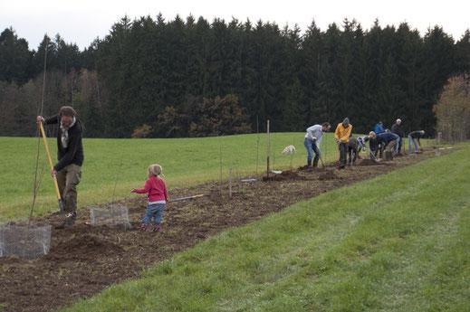 AK Biotoppflege bei eienr Heckenpflanzung   (Foto: R. Dries)