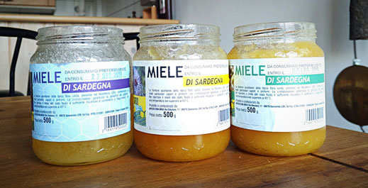Miels de Sardaigne -  Apicoltura Brisi - Asfodelo, Cardo, Eucalipto