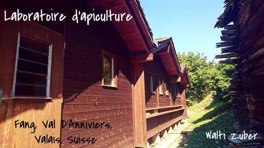 Laboratoire d'apiculture Walti Zuber Fang Suisse