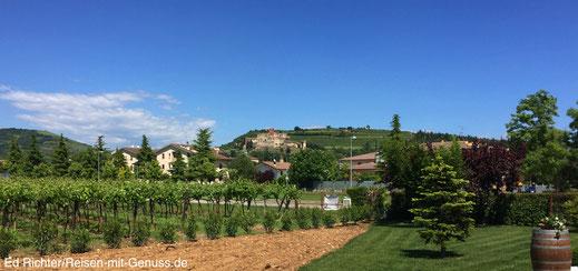 Aussicht Corte Adami Soave Weingut Italien Ellen Warstat