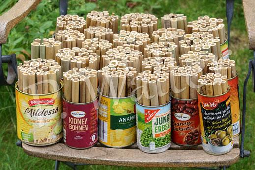Bild: Dosen mit Bambusstengeln; Insektennisthilfe