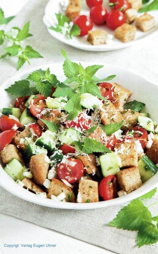 Die zarten Blätter der Goldnessel schmecken angenehm mild. Sie passen perfekt in einen Salat mit Weißbrot, Gurke und Tomaten. Bildnachweis: Eugen Ulmer KG, Fotograf: Rebecca Vitt