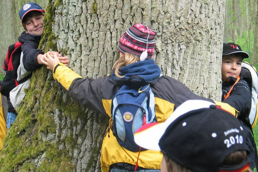 Gemeinsam den Umfang eines Baumes messen © Christian Stierstorfer