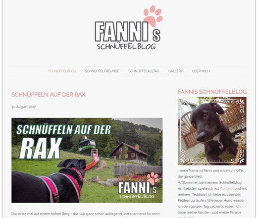 fannis schüffelblog