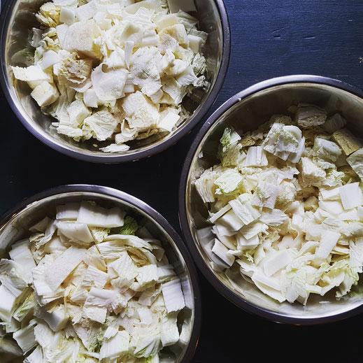 Kimchi Zutaten