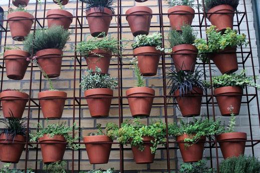 pot en terre jardin