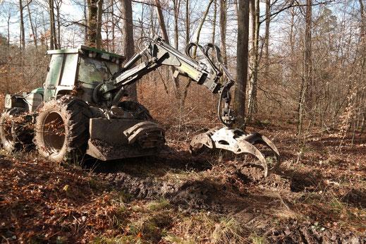 Befahrung eines Rückegassenabschnitts in Herrenberg. Durch punktuelles Entfernen von Bodenmaterial können Vertiefungen an feuchten Stellen geeignete Pfützen schaffen.