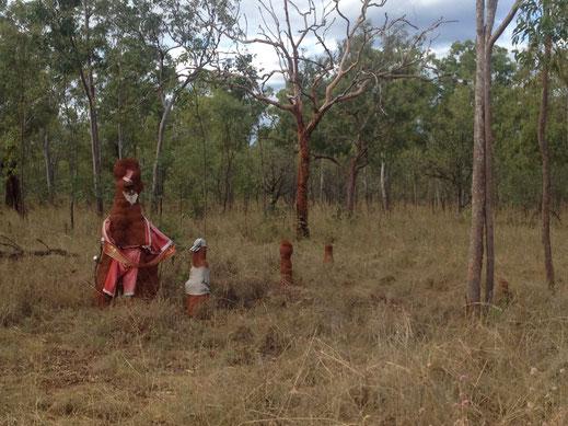 Australien, Northern Territory, Termiten