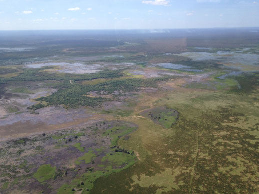 Australien, Northern Territory, Kakadu National Park, Flug, Billabong, Scenic Flight