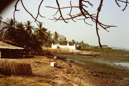 Reisebericht, Reiseblog, Atlantik, Überquerung, Segeltörn, Casamance, Senegal, Carabane, Fluss, Mangrove