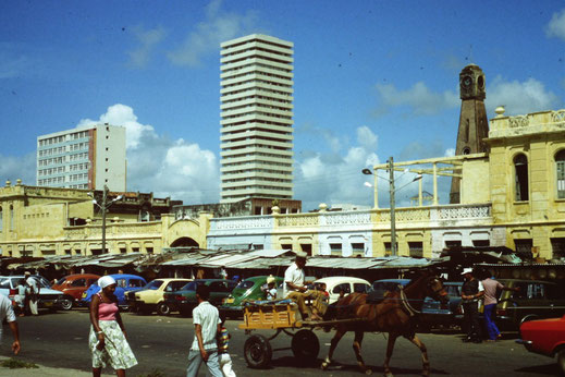Brasil, Brasilien, Recife, Hafen, Zentrum, Markt, Fotografen