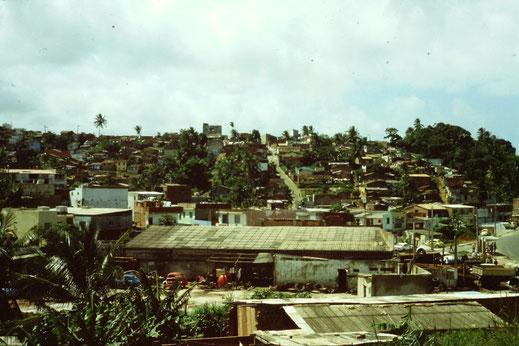 Brasil, Brasilien, Recife, Favelas, Wohngebiet, Siedlung