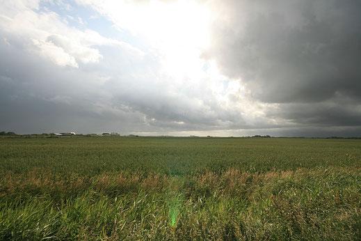 Herbsthimmel über der Insel Pellworm