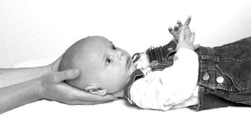 Bild: CranioSuisse® – Schweizerische Gesellschaft für Craniosacral Therapie