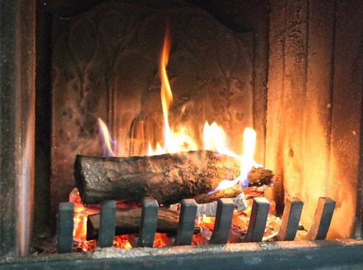 Bild: Kleine Kaminplatte in einem modernen Kaminofen.