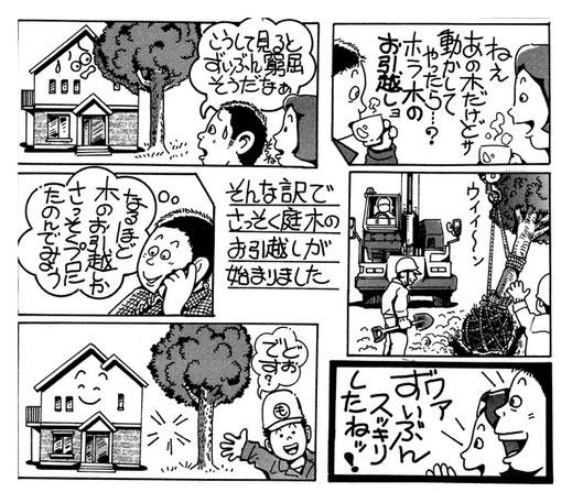浜松市の植木屋さん門西造園の漫画チラシ【庭木の移植・移動・引越し編】