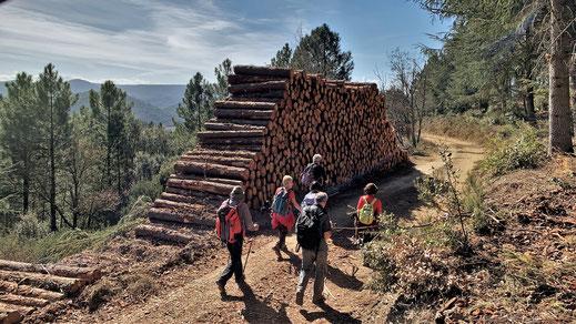 Randos Canétoises: Niveau 2 à Maisons dans l'Aude , circuit des mines le 5 mars 2019