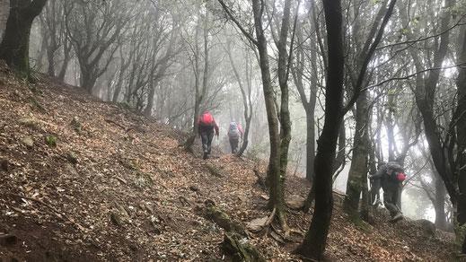 Randos Canétoises: Niveau 3 Hameau de Rimbau le 1 février 2019