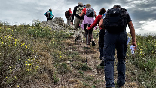 Randos Canétoises : Niveau 3 De Saint Laurent de Cerdans au mont Capell puis au Puig Falco  le 18 octobre 2019