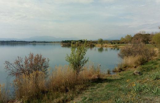 Randos Canétoises: marche autour de l'étang de Villeneuve de la Raho le 2 avril 2019