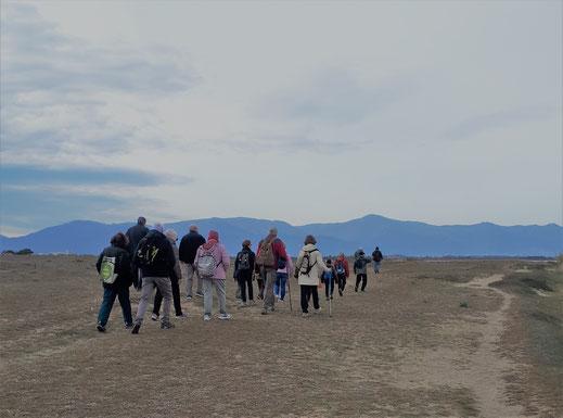 Randos Canétoises: marche Canet Sud Les cabanes des pêcheurs   le 10 mars 2020