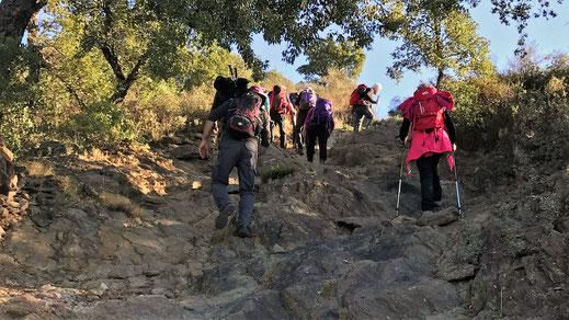 Rando découverte à Palau Saverda vers San Pere de Rodes le 7 novemebre 2017